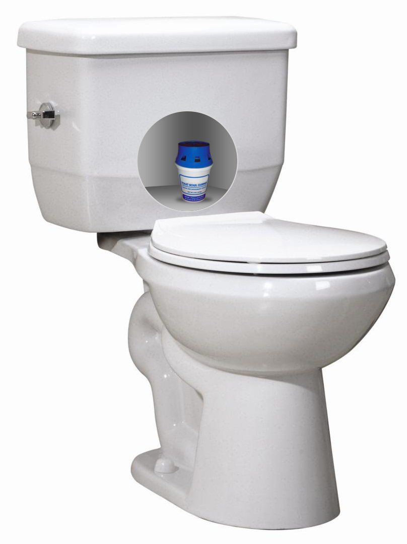 Toilet Tank Sanitizer